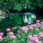 River Rothay