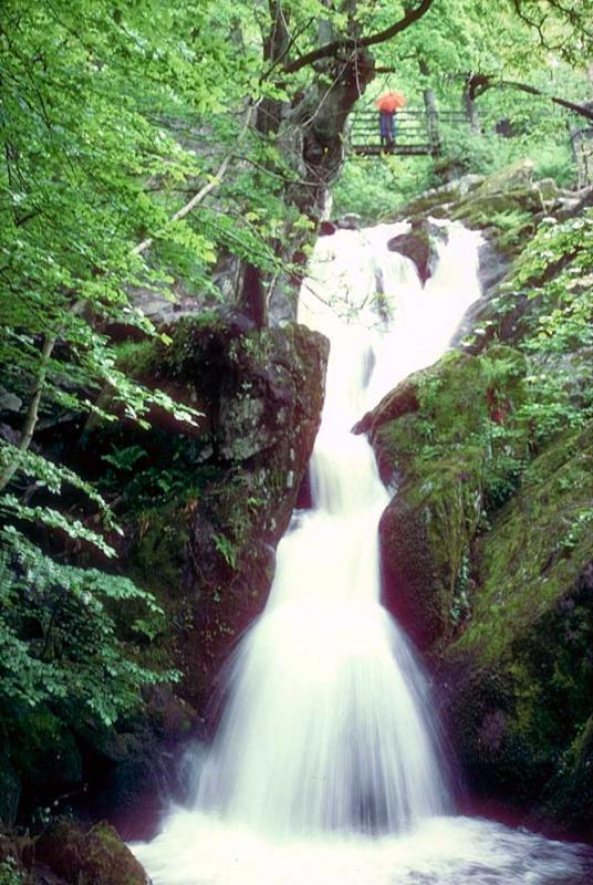 Stockghyll Force Waterfall